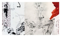 2011 - 50 cm X 50 cm - Techniques mixtes (gravure, sérigraphie sur papier, collage)